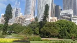 SIDNEY - CAIRNS - MELBOURNE